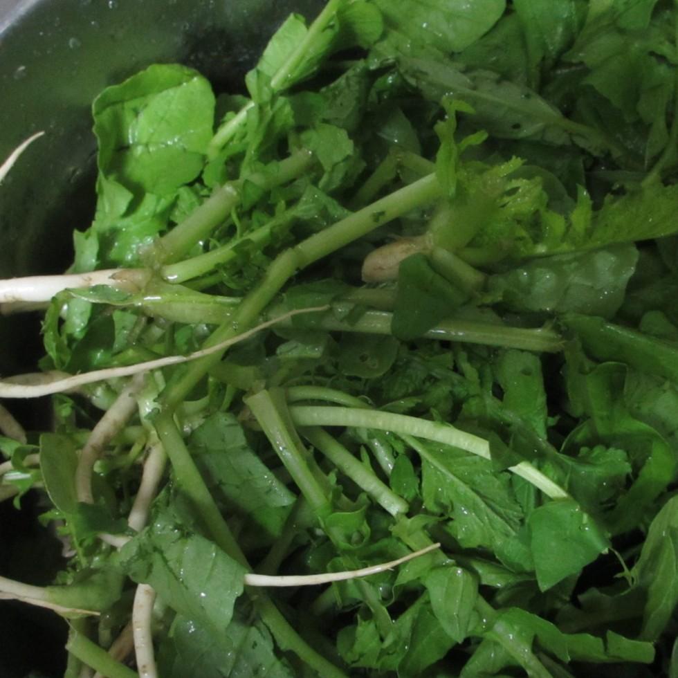 レシピ 菜 大根 間引き